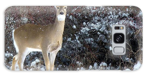 March Snow And A Doe Galaxy Case