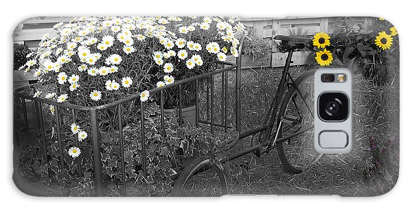 Marguerites And Bicycle Galaxy Case