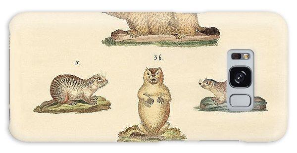 Groundhog Galaxy Case - Marmots And Moles by Splendid Art Prints