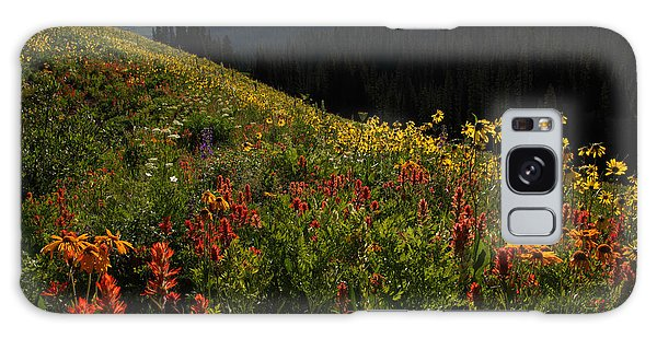 Maroon Bells Wilderness Galaxy Case