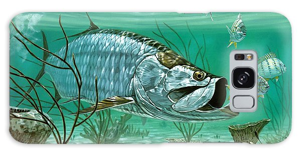 Mangrove Galaxy Case - Marquesas Keys Tarpon by Don  Ray