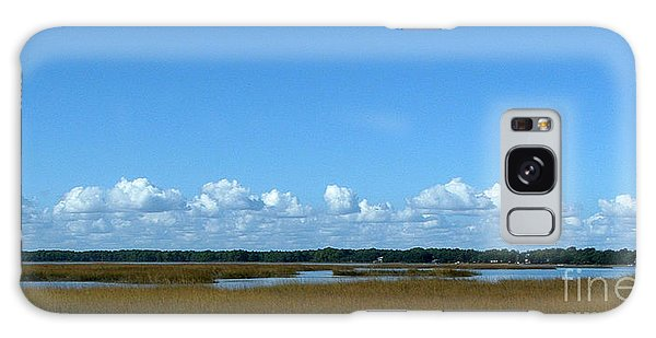 Marsh In Panacea Florida Galaxy Case