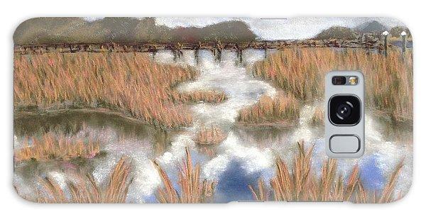 Marsh Reflections Galaxy Case