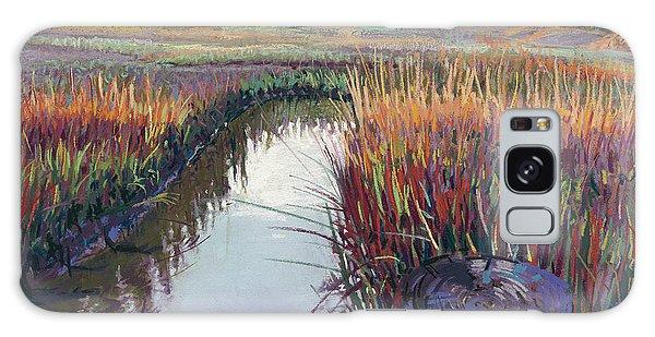 Marsh View Galaxy Case by David Randall