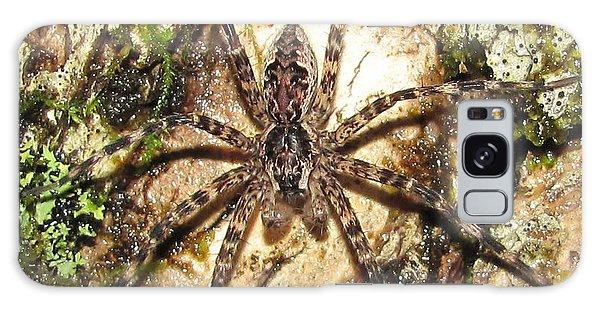 Brown Fishing Spider Galaxy Case
