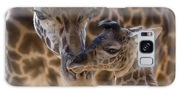 Galaxy Case featuring the photograph Masai Giraffe And Calf by San Diego Zoo