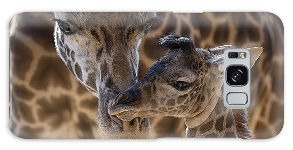 Masai Giraffe And Calf Galaxy Case