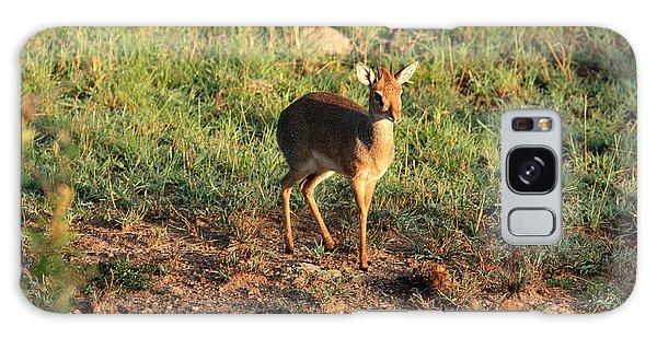Masai Mara Dikdik Deer Galaxy Case