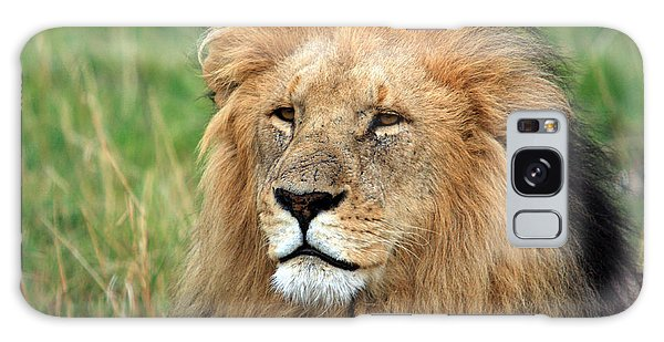 Masai Mara Lion Portrait    Galaxy Case