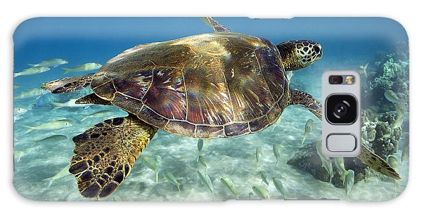 Maui Turtle Galaxy Case