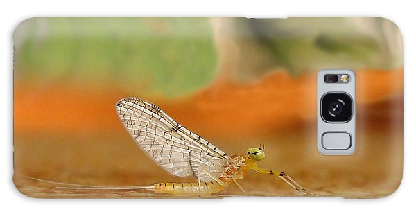 Mayfly Art Galaxy Case by Thomas Young