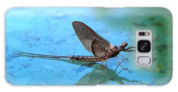 Mayfly Reflected Galaxy Case by Thomas Young