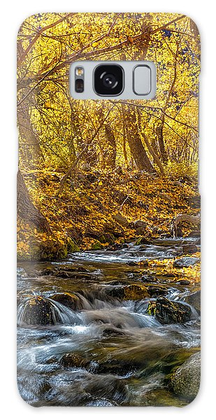 Mcgee Creek Galaxy Case