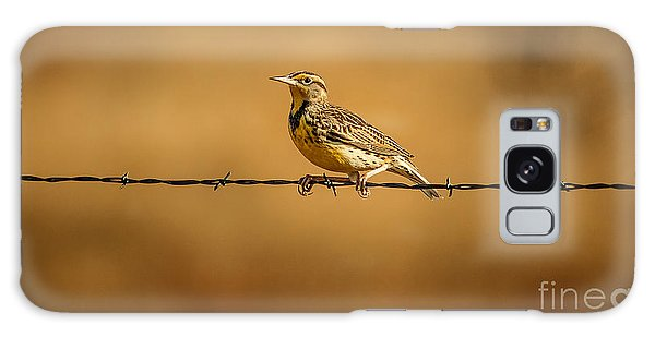 Meadowlark Galaxy Case - Meadowlark And Barbed Wire by Robert Frederick