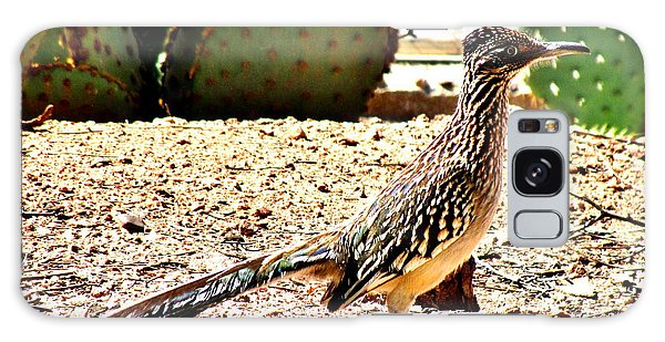 Greater Roadrunner Galaxy Case - Meep Meep by Marilyn Smith