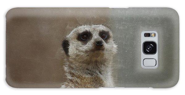 Meerkat 5 Galaxy Case