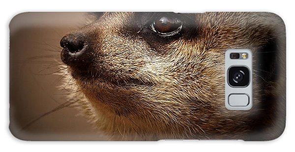 Meerkat Galaxy S8 Case - Meerkat 6 by Ernie Echols