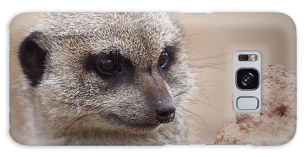 Meerkat 7 Galaxy Case