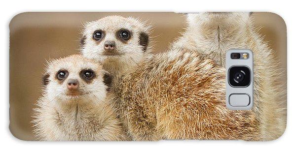 Meerkat Family Galaxy Case