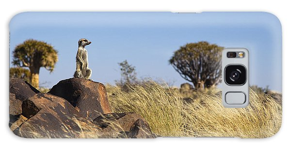 Meerkat In Quiver Tree Grassland Galaxy Case
