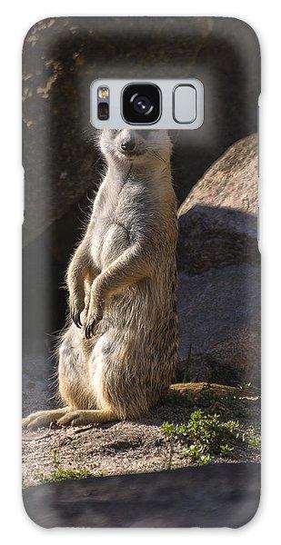 Meerkat Looking Forward Galaxy Case by Chris Flees