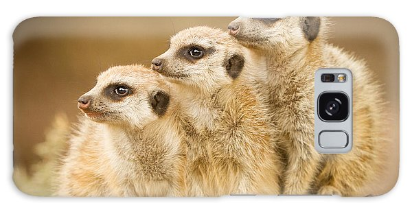 Meerkats Galaxy Case by Craig Dingle