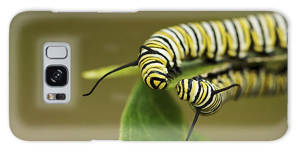 Meeting In The Middle - Monarch Caterpillars Galaxy Case by Jane Eleanor Nicholas
