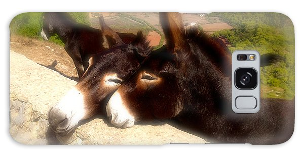 Menorcan Donkeys Galaxy Case