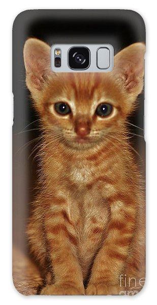 Meow Galaxy Case by Craig Wood