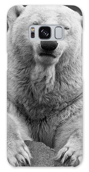 Mercedes The Polar Bear Galaxy Case