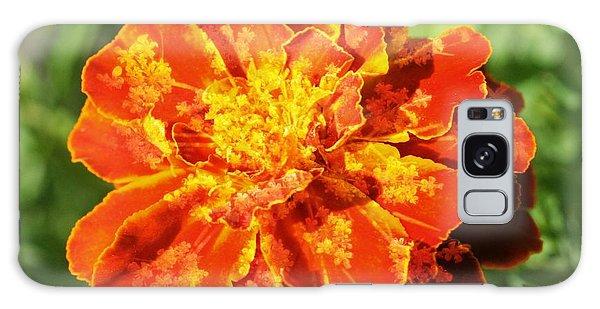 Merry Marigold Galaxy Case by Barbara S Nickerson