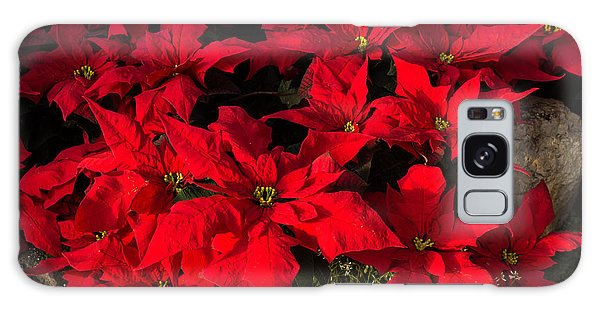 Merry Scarlet Poinsettias Christmas Star Galaxy Case