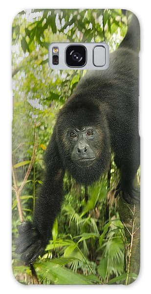 Galaxy Case featuring the photograph Mexican Black Howler Monkey Belize by Kevin Schafer