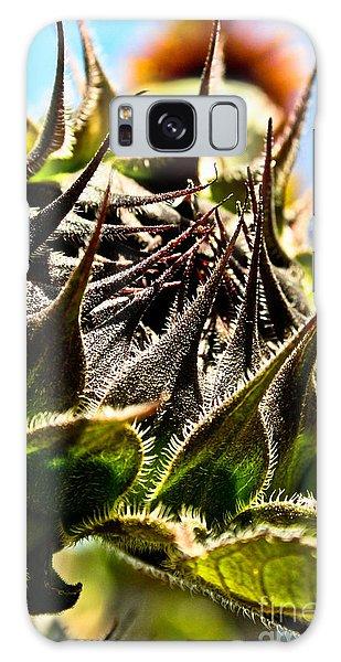 Mexican Sunflower Galaxy Case by Joel Loftus