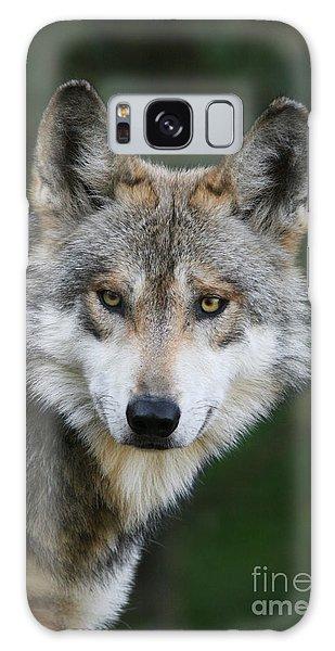 Mexican Wolf #3 Galaxy Case