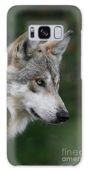 Mexican Wolf #5 Galaxy Case
