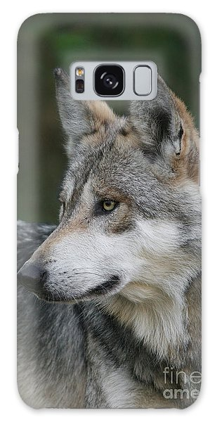 Mexican Wolf #6 Galaxy Case by Judy Whitton