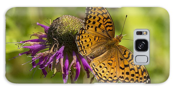 Michigan Fritillary Galaxy Case by Dan Hefle