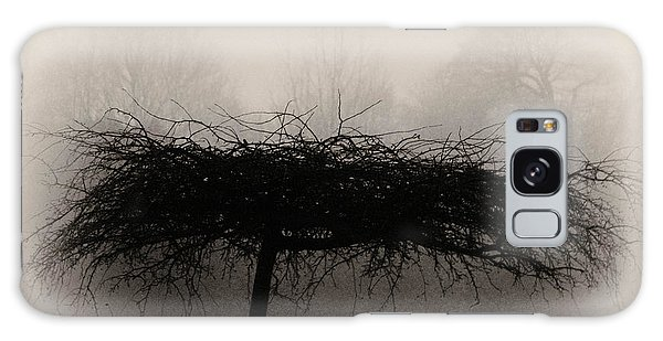 Middlethorpe Tree In Fog Sepia - Award Winning Photograph Galaxy Case