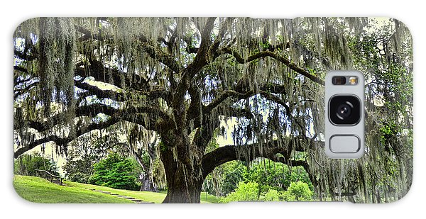 Middleton Place Oak  Galaxy Case by Allen Beatty