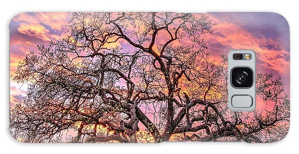 Mighty Oak Tree At Sunset Galaxy Case