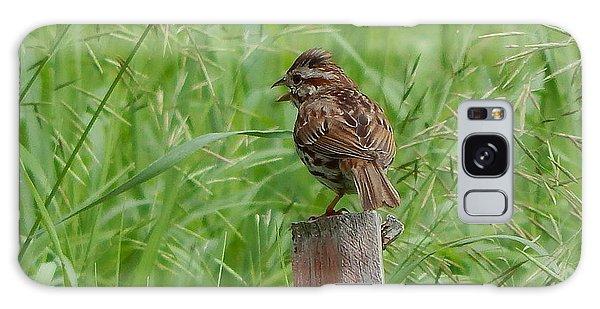 Mighty Sparrow Galaxy Case