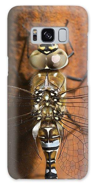 Migrant Hawker Dragonfly Closeup Galaxy Case