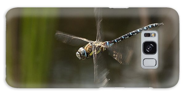 Migrant Hawker Dragonfly In Flight Galaxy Case