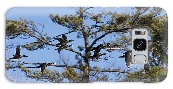 Migrating Wood Ducks Galaxy Case by Dan Hefle