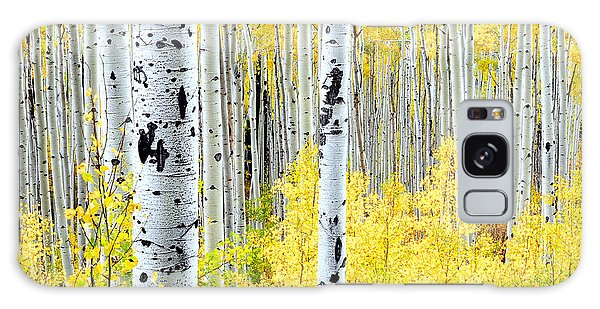 Miles Of Gold Galaxy Case by The Forests Edge Photography - Diane Sandoval