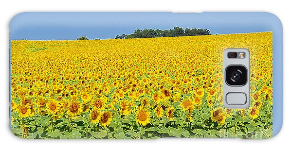 Millions Of Sunflowers Galaxy Case