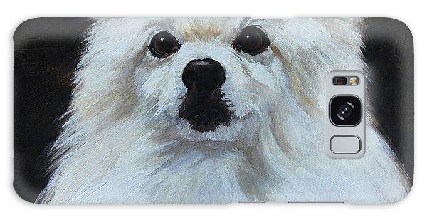 Miniature American Eskimo Dog Galaxy Case