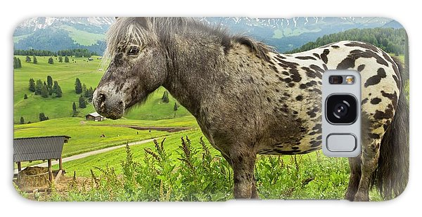 Alms Galaxy Case - Miniature Spotted Pony by Bob Gibbons