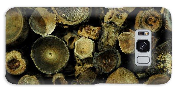 Miocene Fossil Vertebrae Collection Galaxy Case